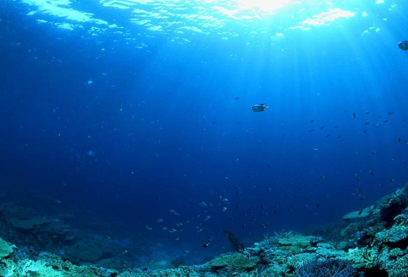 Ледовитый океан под водой фото
