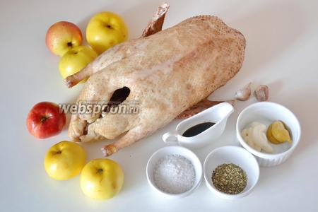 Утка с яблоками в духовке рецепт с фото пошаговый рецепт