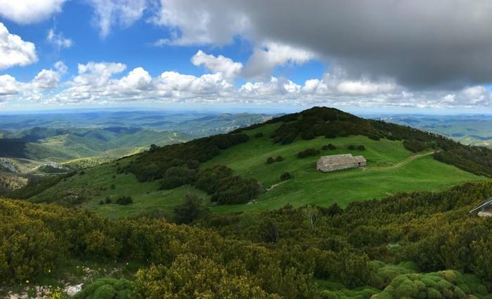 Resultado de imagen de paisaje Arba de Biel
