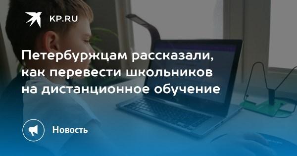 Петербуржцам рассказали, как перевести школьников на ...