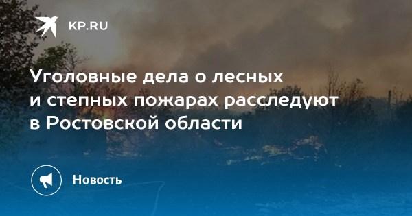 Уголовные дела о лесных и степных пожарах расследуют в ...