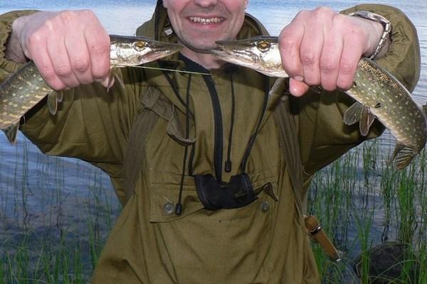 В Ленобласти обеспокоены исчезновением рыбы в Ладожском озере