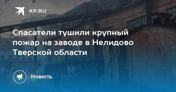 Спасатели тушили крупный пожар на заводе в Нелидово ...
