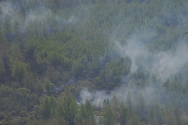 Масштабные пожары в Сибири начались в середине апреля.
