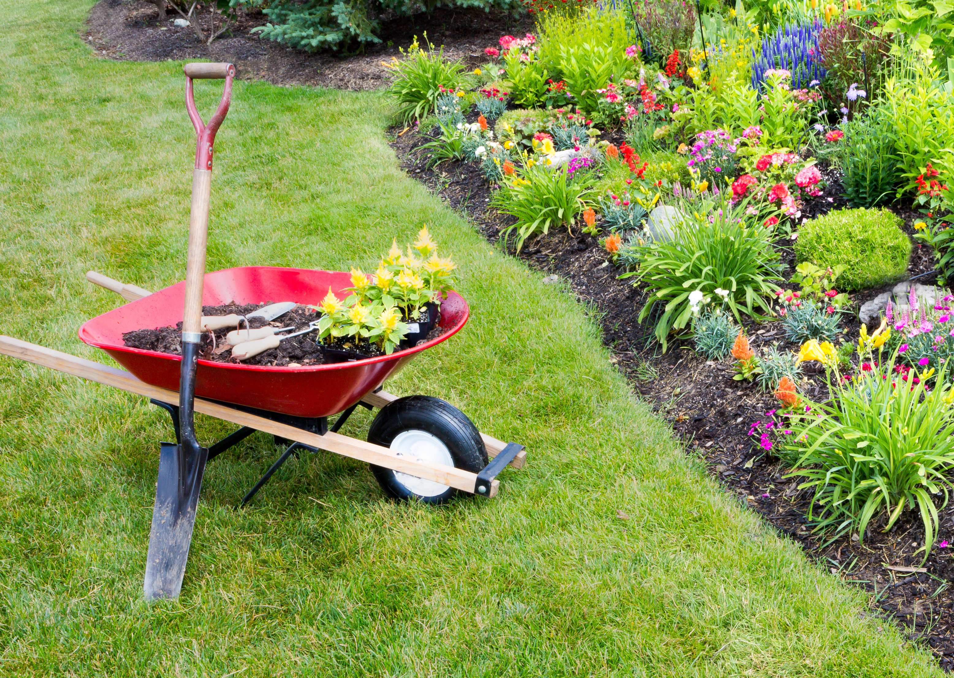 Gardening: The fastest growing UK businesses on Gardening  id=60330