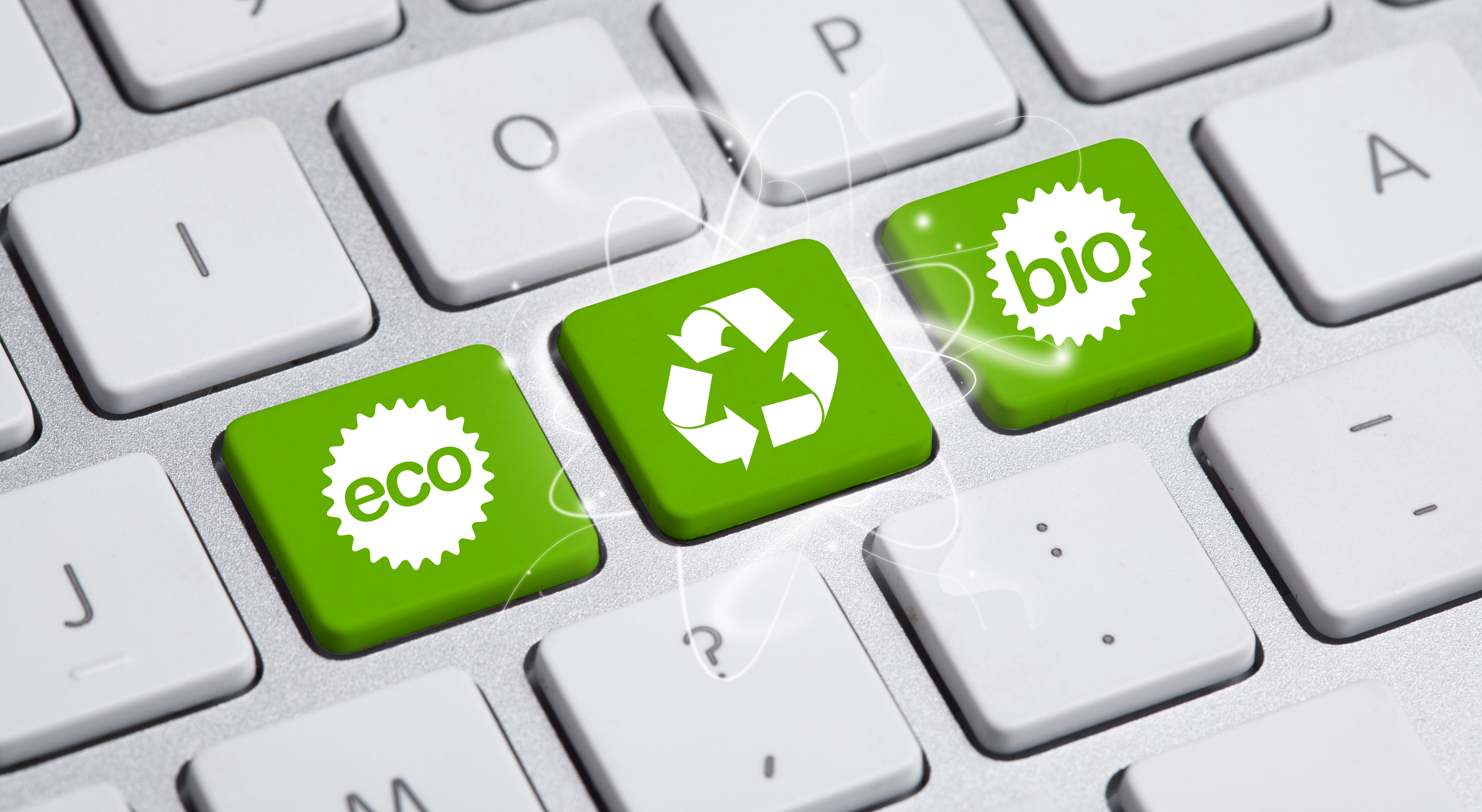 How Reducing Your Carbon Footprint Can Increase Business