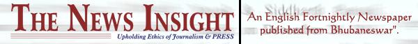 The News Insight
