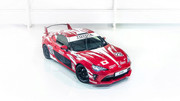 Toyota_GT86_Heritage_Livery_13