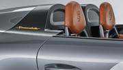 Porsche_911_Speedster_Concept_10