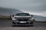 BMW_8_Series_Coupe_38