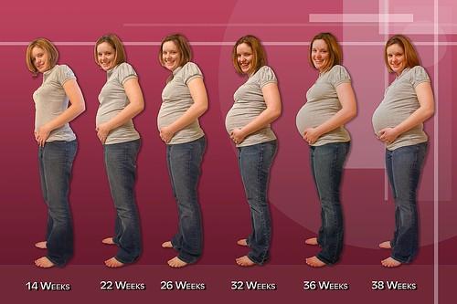 покажите мне фото живота беременной женщины с 1 месяца