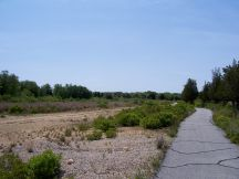 Looking West towards the parking lot and West entrance to the Refuge.