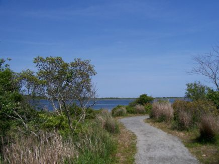 Looking towards Grassy Point and East Beach from the path.