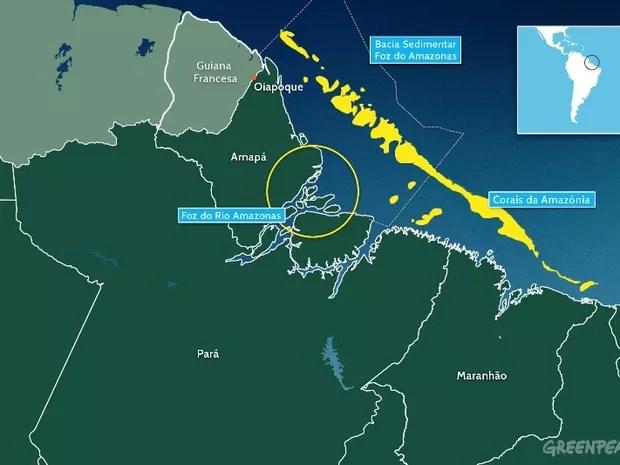 Corais existem na costa do Amapá (Foto: Divulgação/Greenpeace)