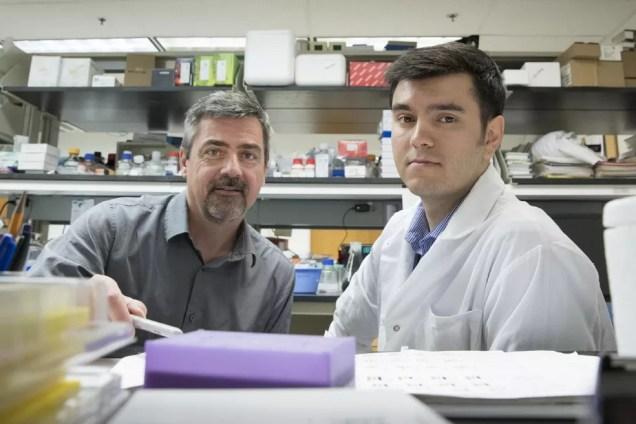 Norbert Leitinger (esquerda) e Vlad Serbulea, da Universidade de Virginia: pesquisadores descobriram como a obesidade causa doenças crônicas  (Foto: Dan Addison   University of Virginia Communications)