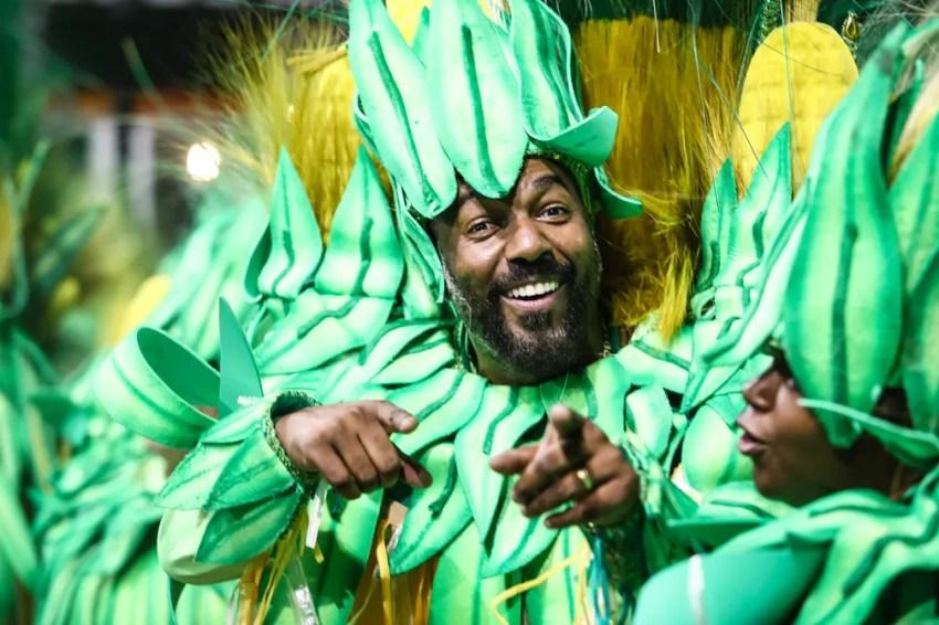 """Ala """"milharal""""no desfile da Dragões da Real (Foto: Fábio Tito/G1)"""