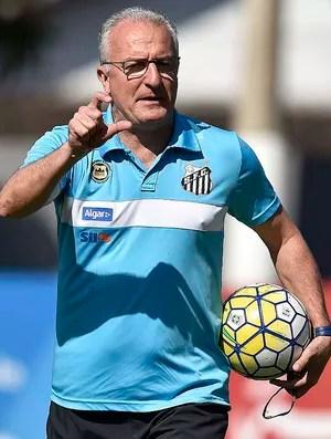 Dorival Júnior (Foto: Ivan Storti/Santos FC)