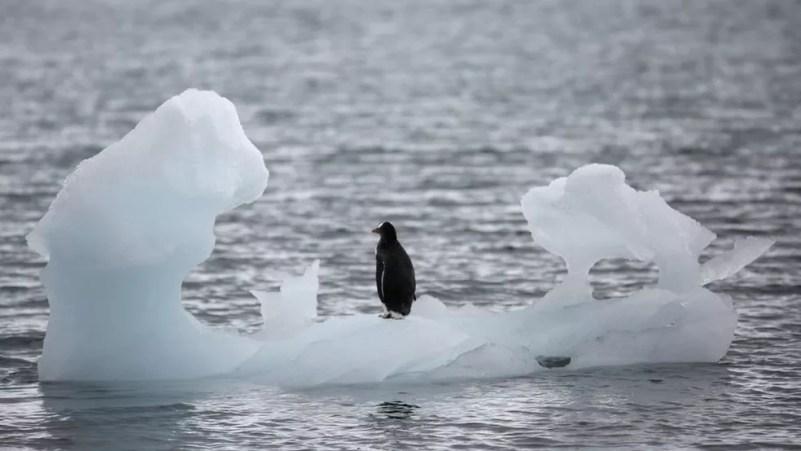 Organização Meteorológica Mundial diz que temperatura de 18,3° é a maior já registrada. — Foto: Arquivo/Reuters