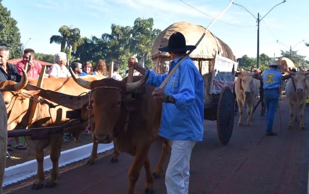 Foto de arquivo: Carreiro desfila na romaria dos carros de boi em Trindade, Goiás — Foto: Vitor Santana/ G1