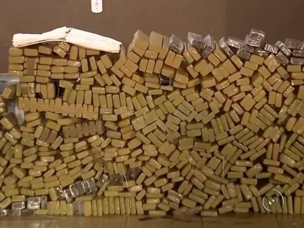 Droga foi apreendida em uma chácara em Tanabi (Foto: Reprodução / TV TEM)