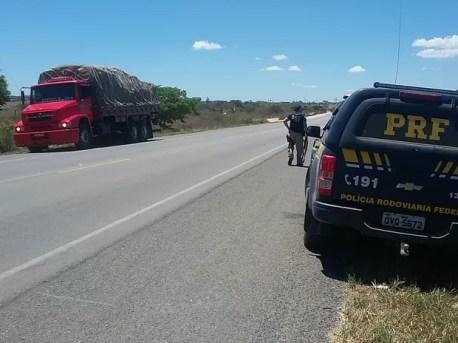 Caminhão roubado é recuperado pela PRF na BR-423  (Foto: Divulgação/PRF)