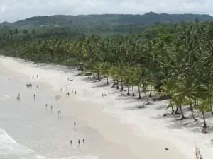 Uma das praias de Itacaré vista do alto de uma trilha (Foto: Glauco Araújo/G1)