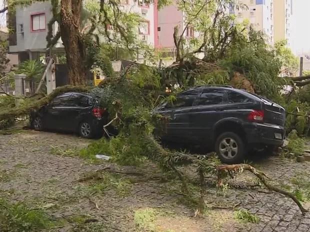 Árvores da rua Gonçalo de Carvalho foram derrubadas pela força do cento em Porto Alegre  (Foto: Reprodução / RBS TV)
