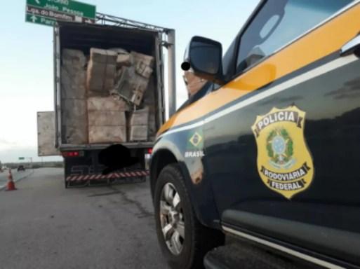 Carga foi descoberta em caminhão na BR-101, em São José do Mipibu — Foto: Divulgação/PRF