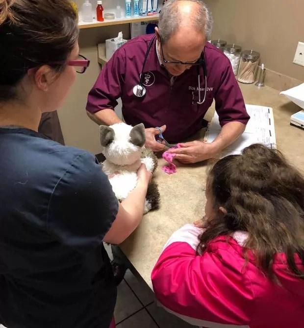 Doutor Maier fazendo um curativo em Donnie (Foto: Pioneer Veterinary Clinic/Susie Efigenio)