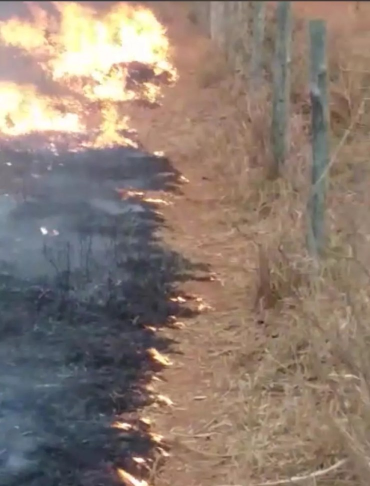 Incêndio atinge propriedades rurais em Poxoréu (MT) — Foto: Corpo de Bombeiros/Reprodução