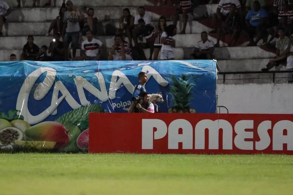 Anderson teve que deixar o cachorro na arquibancada para que jogo pudesse ser retomado — Foto: Aldo Carneiro / Pernambuco Press
