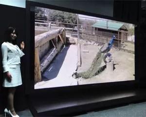 TV 145 polegadas Panasonic (Foto: Divulgação)