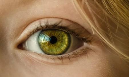 Medicamento pode restaurar visão em pessoas que possuem mutaçao no gene RPE65 (Foto: Pixabay)