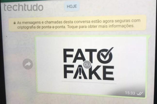 O compartilhamento de notícias falsas no WhatsApp vai contra os termos de uso do mensageiro  — Foto: Rodrigo Fernandes/TechTudo