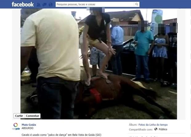 Vídeo de jovens dançando funk em cavalo imobilizado causa polêmica, em Bela Vista de Goiás (Foto: Reprodução/Facebook)