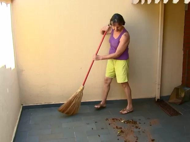 Moradora acorda e se depara com dezenas de baratas todos os dias em São Carlos (Foto: Rodrigo Sargaço/EPTV)