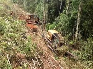 Ibama denunciou engenheiros agrônomos por emissão de laudos falsos para desmatamento ilegal (Foto: Assessoria/Ibama-MT)