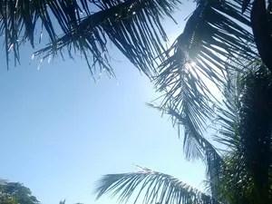 Sol forte no início do Verão (Foto: Paulo Henrique Cardoso/G1)