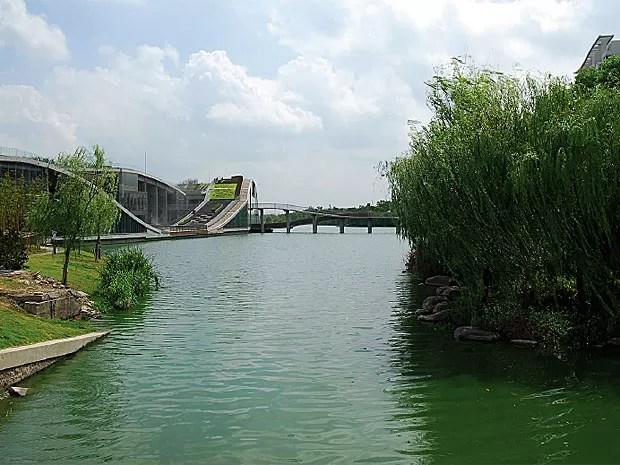 Tecnologia dos jardins filtrantes foi aplicada nas margens de três rios, na China (Foto: Reprodução / Phytorestore)