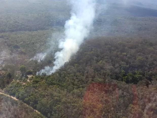 Segundo chefe de parque, incêndio foi controlado, mas ainda existem pequenos focos (Foto: Divulgação/Corpo de Bombeiros Militares)