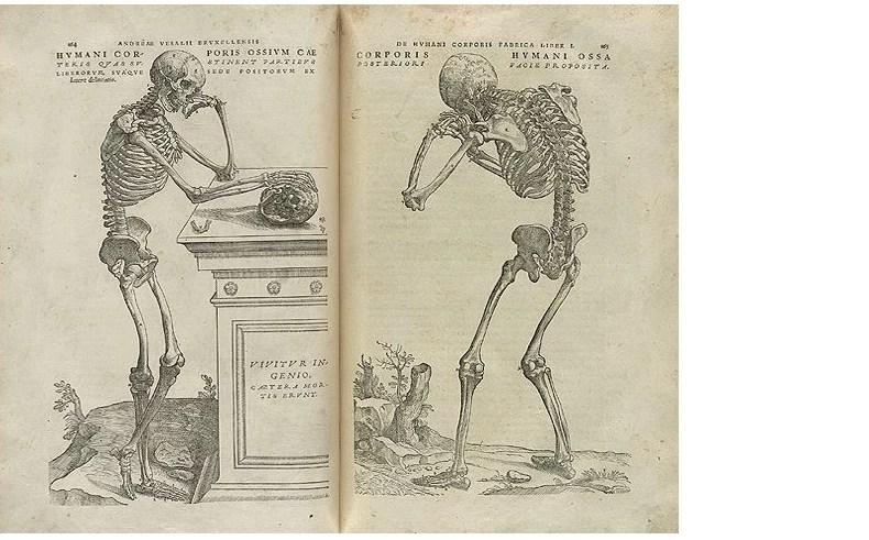 O De Humani Corporis Fabrica, um dos livros mais influentes da medicina moderna (Foto: biblioteca britânica)
