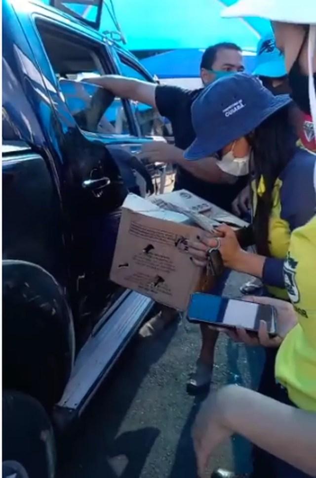 Clientes e agentes da Semob fizeram o resgate dos animais — Foto: Reprodução