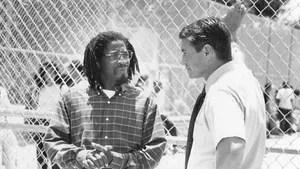 Num bairro pobre e violento de Miami, professora sofre coação de alunos após enfrentar líder de gangue. Para resolver o problema, o namorado da mestra, um soldado mercenário, se disfarça de professor e começa a investigar as ligações de alunos com perigoso traficante.