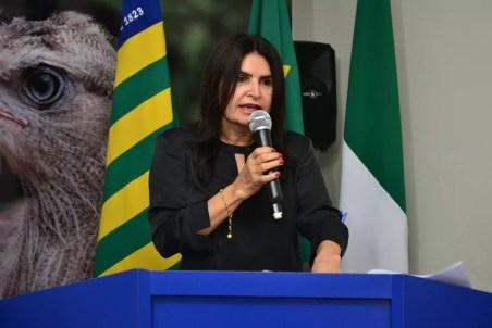 Prefeita Regina Coeli disse que sentiu ofendida de forma pessoal (Foto: Divulgação/Prefeitura de Pio IX)