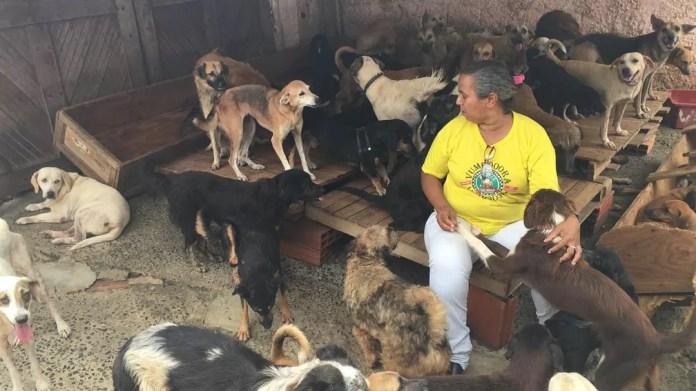 Mulher diz gastar 100 quilos de ração por dia para alimentar animais — Foto: Alan Alves/G1