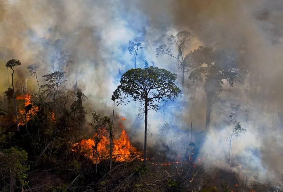 Queimada em área desmatada em Novo Progresso, no Pará, em agosto de 2020 — Foto: CARL DE SOUZA / AFP