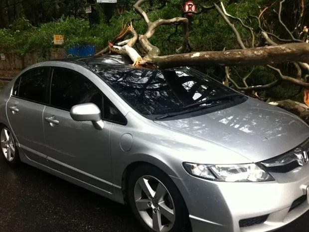 Árvore atinge carro e bloqueia Avenida Morumbi (Foto: Márcio Pinho/G1)