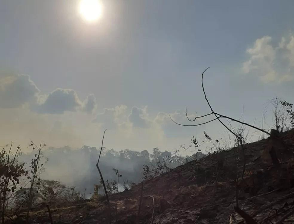 Incêndio na Reserva Margarida Alves em Rondônia, fotos são de agosto de 2020  — Foto: Flaviane Gava Ianiski/Arquivo pessoal