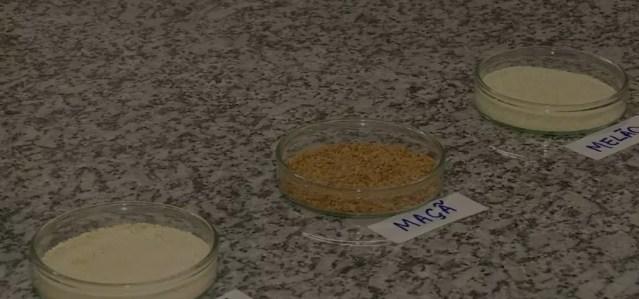 Pesquisa da Esalq-USP utilizou resíduos de maçã, melão e abacaxi  — Foto: Oscar Herculano/EPTV