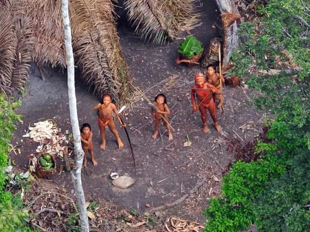 índios isolados (Foto: Gleison Miranda/ Funai/ Survival/ Divulgação)